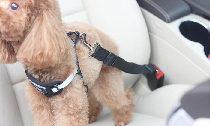 cinto de segurança para cachorro 2 - CINTO DE SEGURANÇA para Cachorro | É Importante?