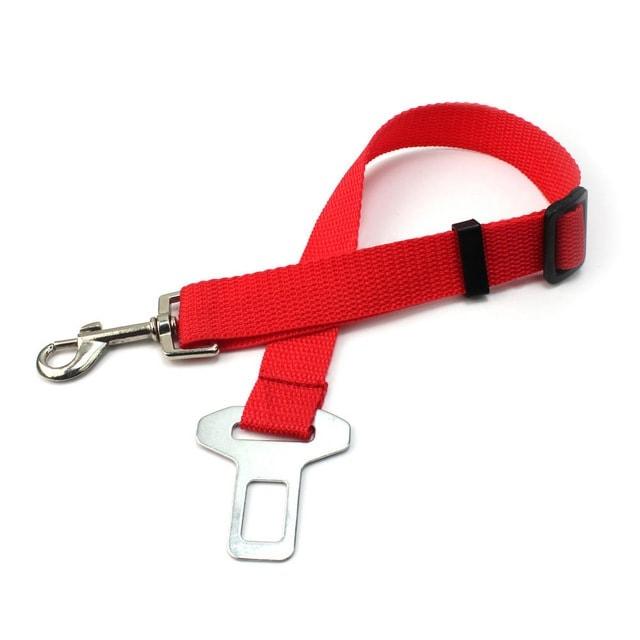 cinto de segurança para cachorro 3 - CINTO DE SEGURANÇA para Cachorro | É Importante?
