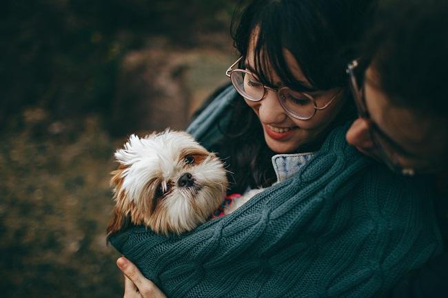 Como fazer seu cão viver mais 13 - Como Fazer Seu Cão Viver Mais - 14 DICAS Incríveis