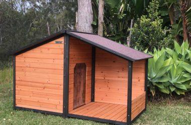 CASINHA DE CACHORRO | 4 Dicas para Construir uma
