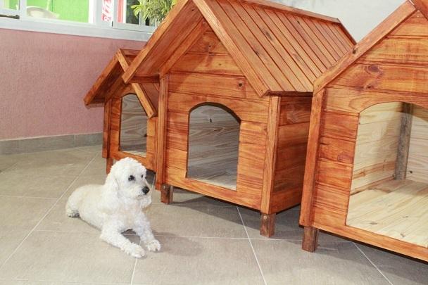 casinha de cachorro 5 - CASINHA DE CACHORRO | 4 Dicas para Construir uma