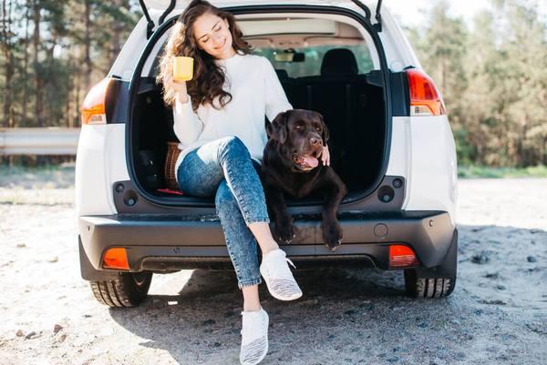 cachorro no carro 5 - CACHORRO NO CARRO | Dicas para Transportar seu Dog