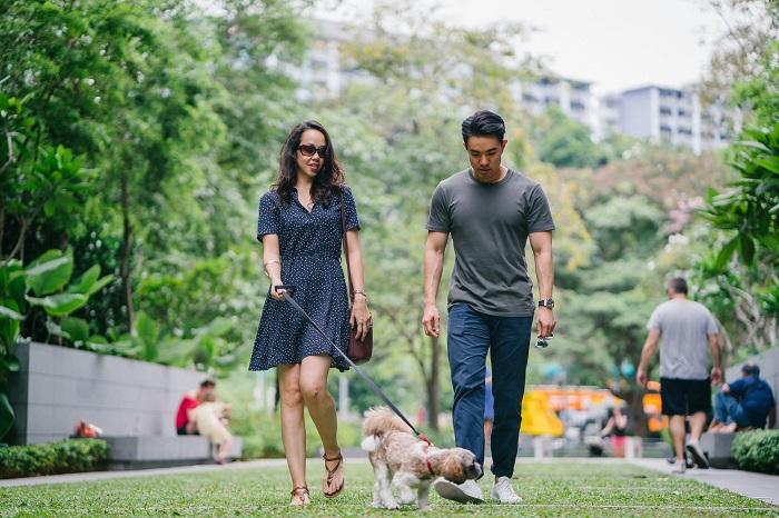 passear com o cachorro 3 - PASSEAR COM O CACHORRO, Você Sabe Qual Tempo Ideal?