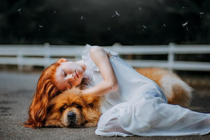 raca de cachorro para criancas 1 - CACHORRO PARA CRIANÇA: Qual a Melhor Raça pra Escolher?