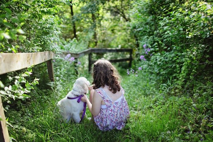 raca de cachorro para criancas 2 - CACHORRO PARA CRIANÇA: Qual a Melhor Raça pra Escolher?