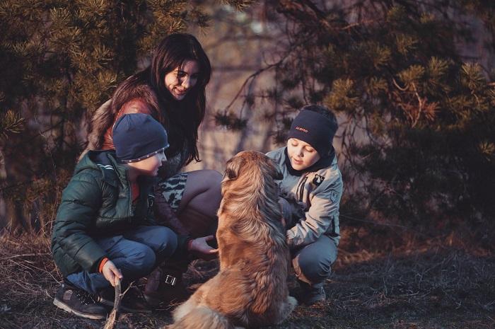 raca de cachorro para criancas 8 - CACHORRO PARA CRIANÇA: Qual a Melhor Raça pra Escolher?