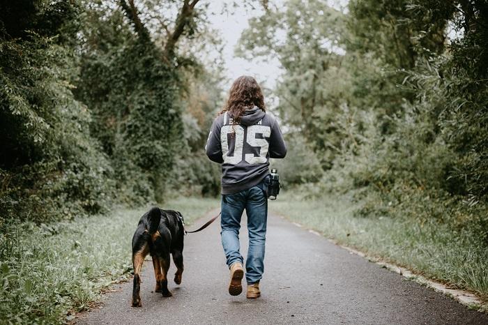 Como adotar cachorro 1 - Como adotar cachorro? Saiba 6 Dicas importantes